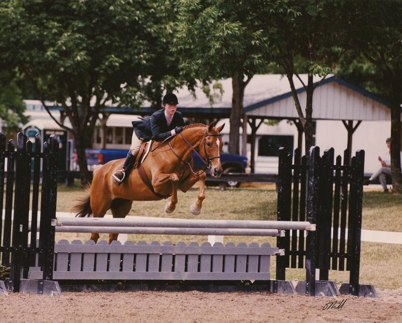 horses jumping over fences. Though he no longer jumps the